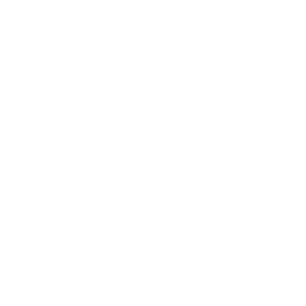 Wordpress Schulungen in Ulm